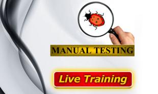 Manual-Testing-Online-Training-310x223
